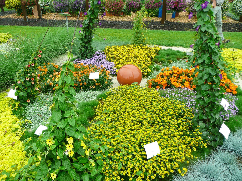 sommerblumen pflanzen sommerblumen helfen ihnen einen garten voller farben zu sommerblumen. Black Bedroom Furniture Sets. Home Design Ideas